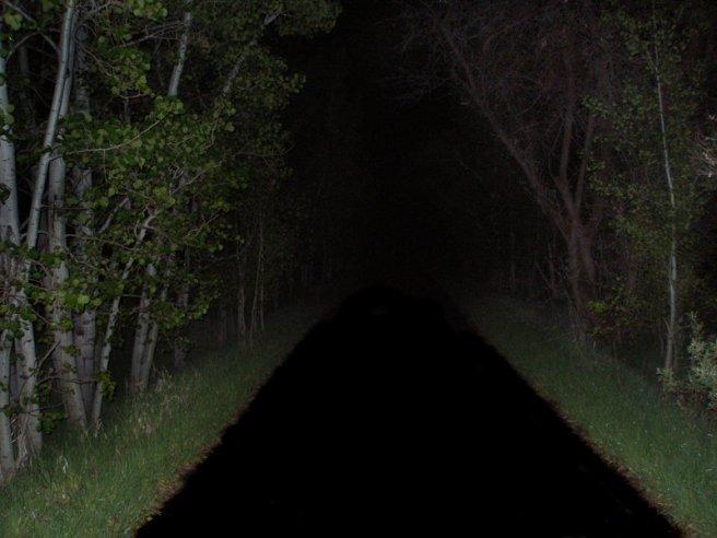 dark park.jpg