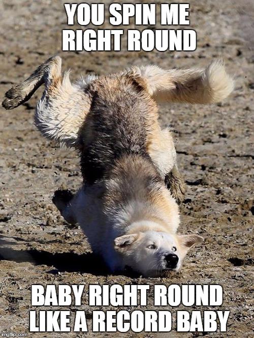 Spin Round