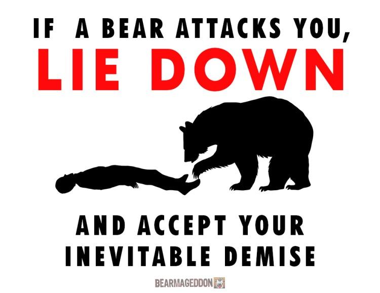 LieDOwn Bear